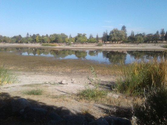 The Lake We Really Need Rain
