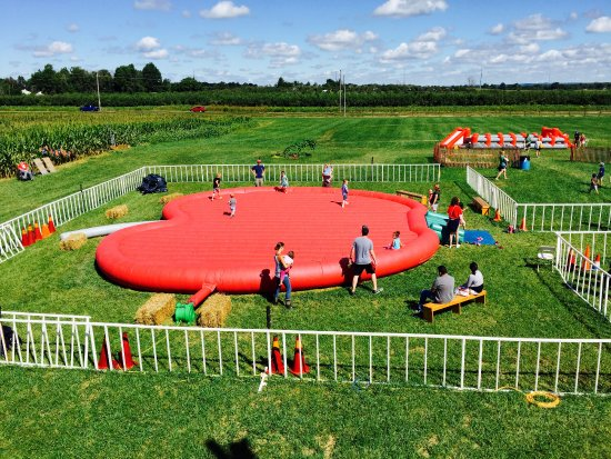 Kids Play Area Bouncy Apple Picture Of Lynd S Fruit Farm Pataskala Tripadvisor