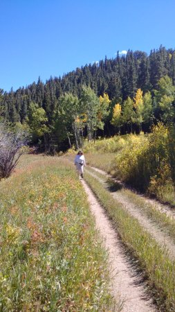 Nederland, CO: Joan on the trail