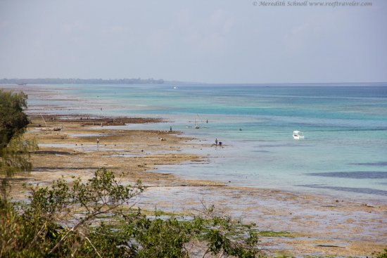 The Manta Resort: Low-tide view from Villa 1