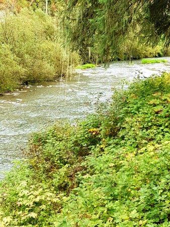 Hyder, AK: river