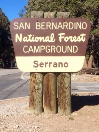 Fawnskin, CA: San Bernardino National Forest - Serrano Campground