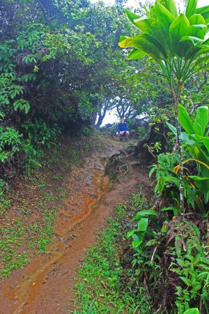 Waihee, Havaí: Very slippery