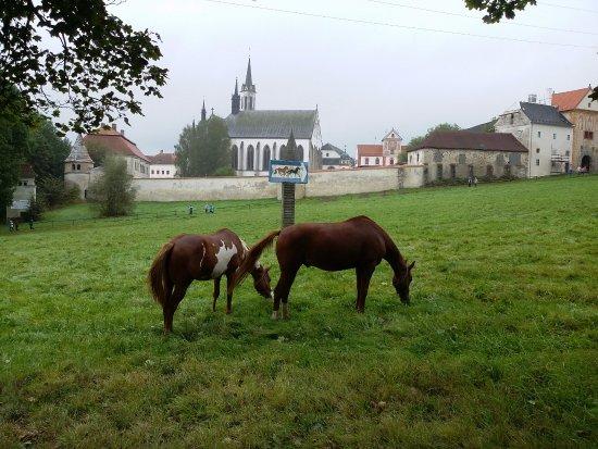 Frymburk, Repubblica Ceca: Липно