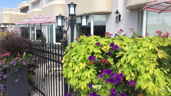 Orillia, แคนาดา: Bright umbrellas and fragrant flowers add ambiance to your outdoor dining experience