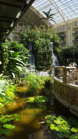 Gaylord Opryland Resort & Convention Center: 20160920_111337_large.jpg