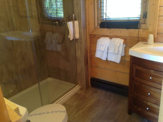 Sainte-Rose-du-Nord, Canada: Bathroom with shower