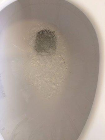 El Portal, CA: toilet bowl cracked