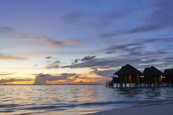 North Ari Atoll Foto