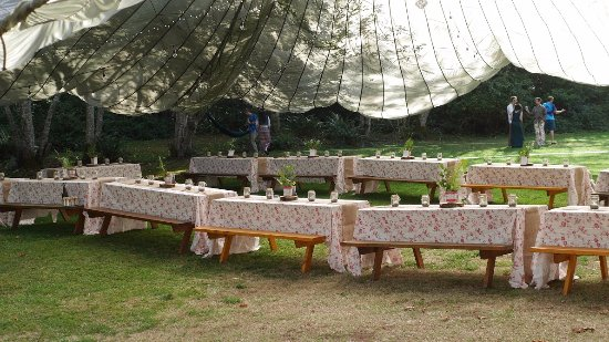 Gabriola Island, Canada: where we set up tables for dinner, under a large parachute that we put up in the field/common ar