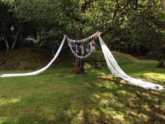 Gabriola Island, Canada: our 'wedding tree' in the orchard