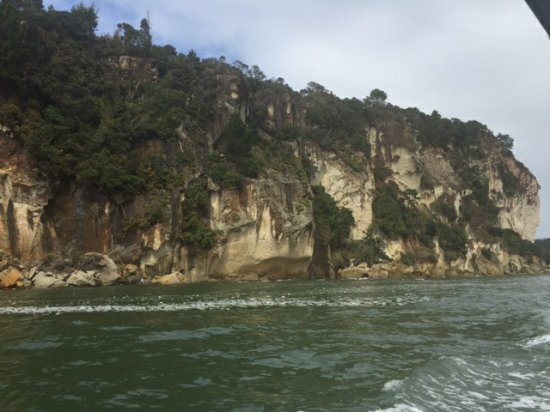 Whitianga, Nuova Zelanda: Shakespeare's Cliff