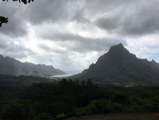 莫雷阿島照片