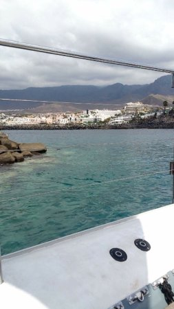 Freebird Catamarans: View
