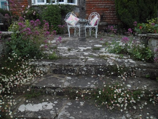 Herstmonceux, UK: lots of seats everywhere to relax and enjoy the gardens..