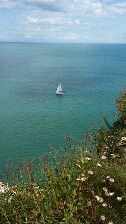 Brixham, UK : View from the cliff