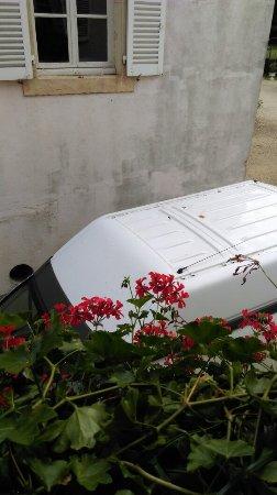 Saulon la Rue, France: IMAG0957_large.jpg