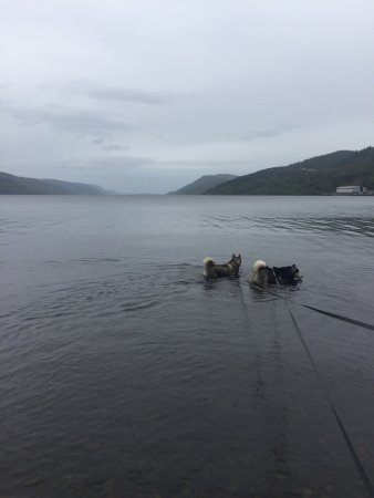 Loch Ness: photo0.jpg