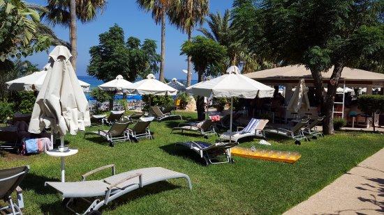 Sunrise Beach Hotel: solstolar på gräsmatta