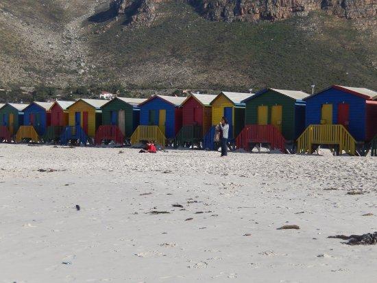 Muizenberg, Sudáfrica: Casinhas coloridas!