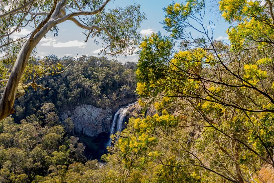 Waterfall Way: Lower Ebor Falls