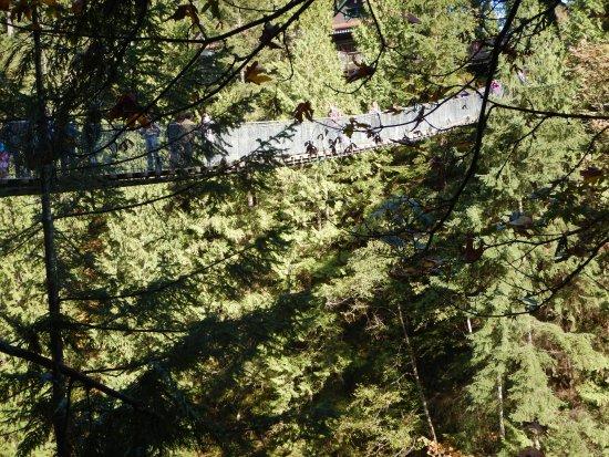 Норт-Ванкувер, Канада: The suspension bridge