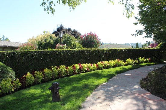 Healdsburg, CA: Gardens