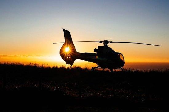 Tasman, Nya Zeeland: Garden City Helicopters Nelson