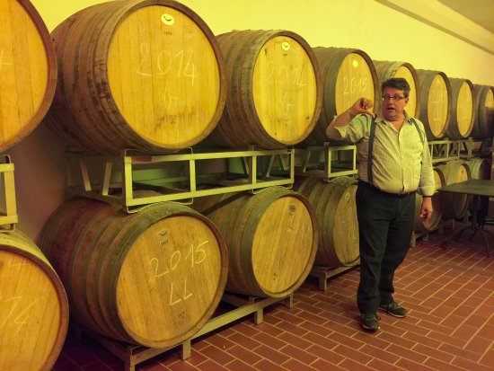 Wine Tour in Tuscany: Andrea showing us how the wine is processed