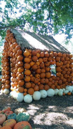 Cheekwood Botanical Gardens & Museum of Art: Pumpkin House
