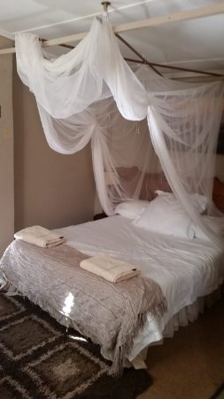 Lorries Bed and Breakfast: Nice mosquito netting, but not needed while we were there.