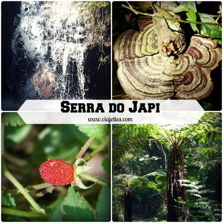 Fundacao Serra do Japi