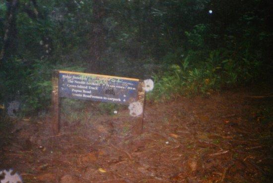 Te Rua Manga (The Needle): Sign at the cross roads.