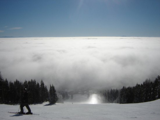 Whitefish Mountain Resort: Sun Dog