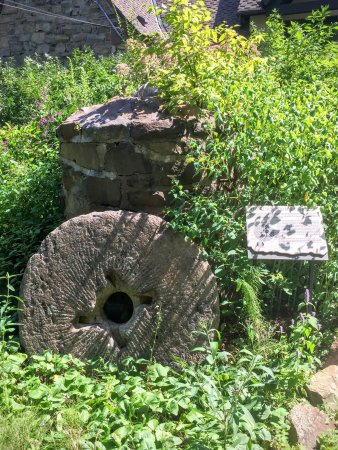 Short Hills, نيو جيرسي: Cora Hartshorn Arboretum and Bird Sanctuary