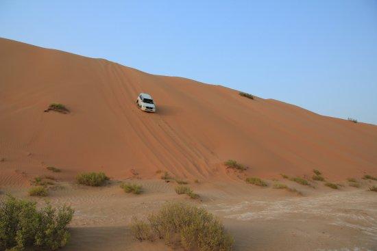 Qasr Al Sarab Desert Resort by Anantara: Dune Bashing