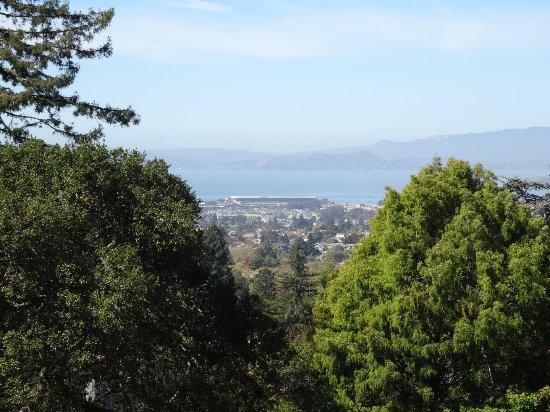 Berkeley, CA: photo2.jpg