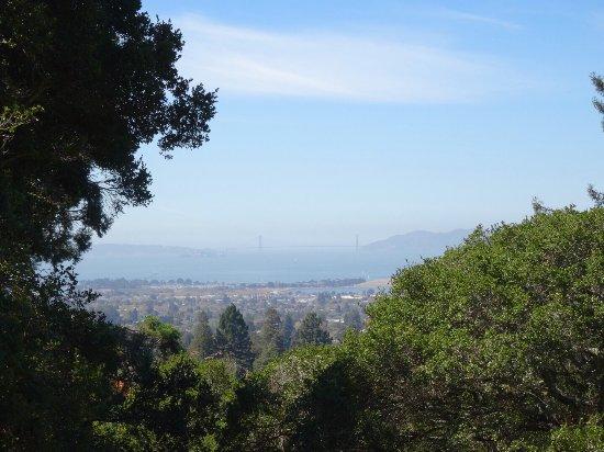 Berkeley, Californië: photo5.jpg