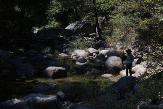 Three Rivers, Καλιφόρνια: Marble Fork Kaweah River