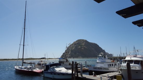Morro Bay, CA: Giant Geologic Wonder