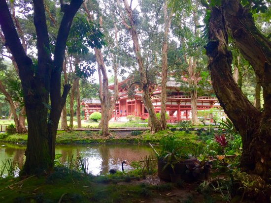 Kaneohe, HI: Temple view from the trail path.