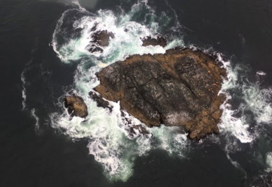 Ucluelet, Canadá: Rock with sealions