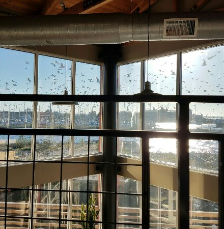 Cannery Pier Hotel: 20160921_174440_large.jpg