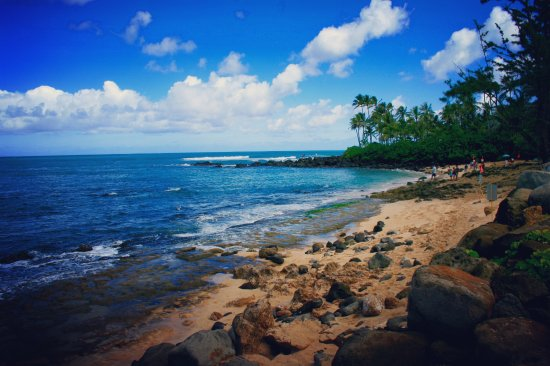 Haleiwa, HI: Turtle Beach