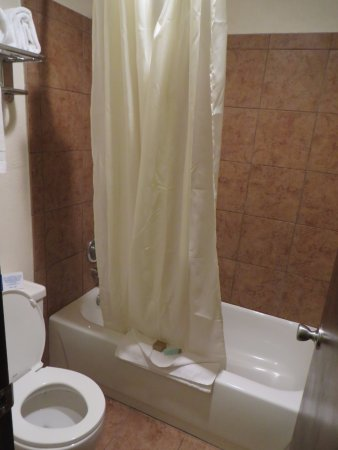 Campus Inn Missoula : Decent sized shower with good water pressure