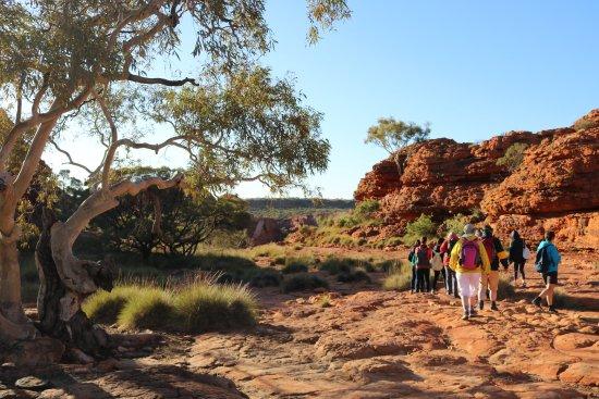 Yulara, Australia: Just stunning scenery