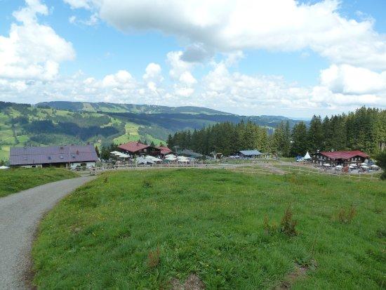 Alpsee Bergwelt: Bereich um die Bergstation