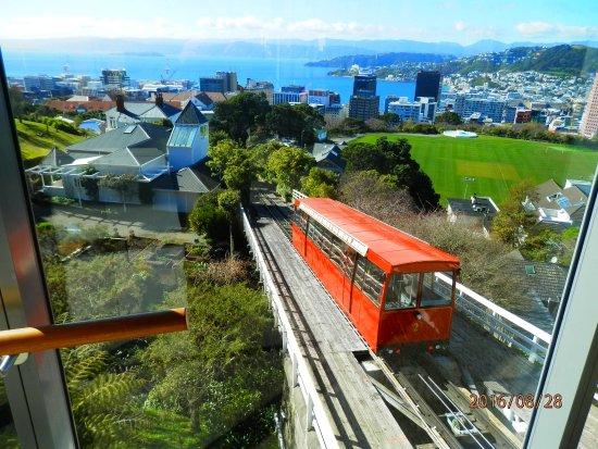 Playground Picture Of Wellington Cable Car Wellington Tripadvisor