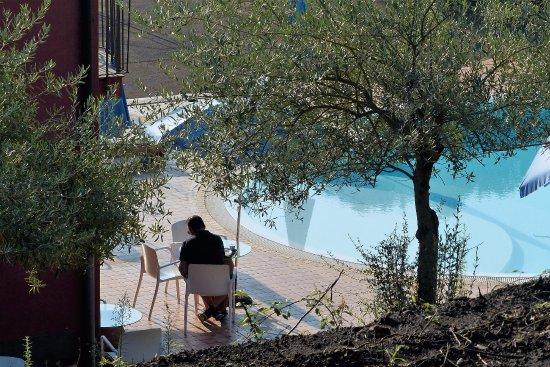 La Foresta del Salto del Corvo: Colazione bordo piscina dinanzi al bar