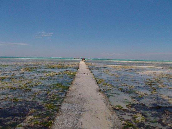 Karafuu Beach Resort and Spa: Le ponton glissant permettant l'accès au lagon à marée basse.
